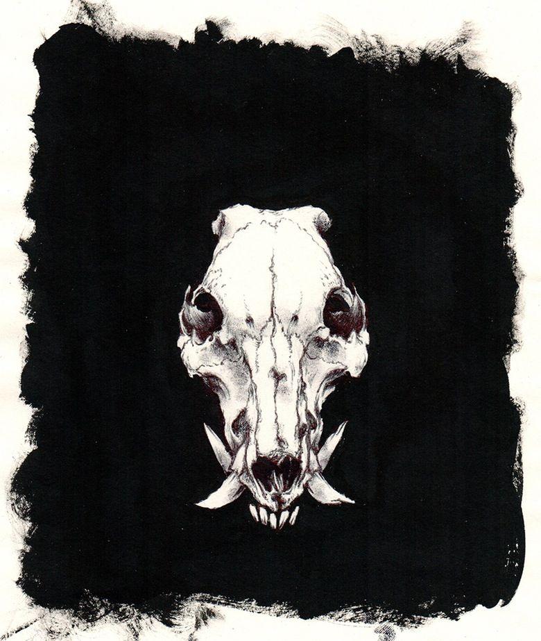 Wild boar skull clipart vector transparent stock Image of Boar skull   ART - DRAWINGS - B+W   Hunting tattoos ... vector transparent stock
