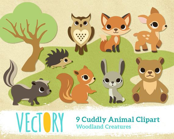 Wild forest clipart png transparent download Cute Forest Wild Animal Woodland Creature Clipart Clip by ... png transparent download