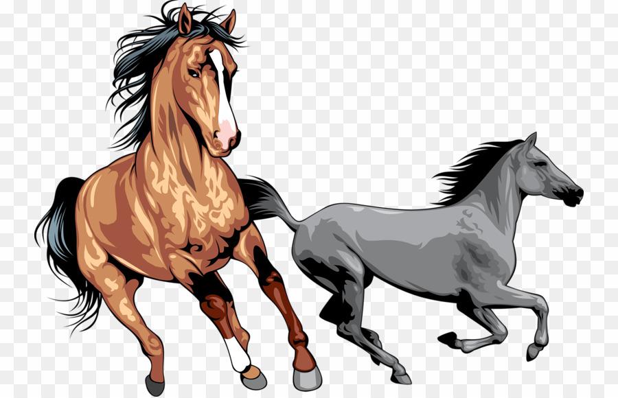 Wildhorse clipart