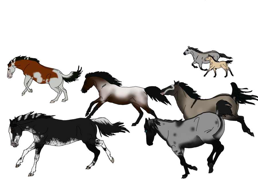 Wildhorse clipart png free stock Wild Horse Clipart Group with 85+ items png free stock
