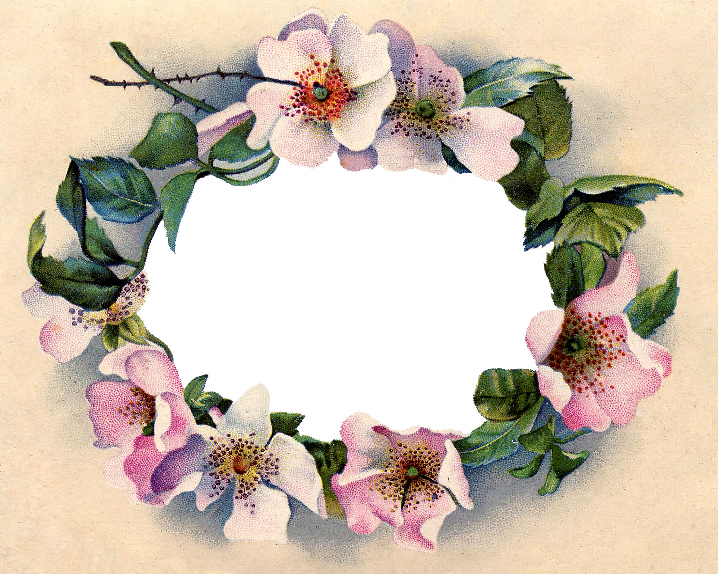 Wild rose clipart border clip art free download Victorian Clip Art - Stunning Wild Rose Frame - The Graphics ... clip art free download