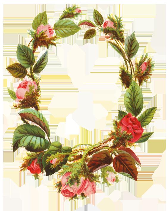 Wild rose clipart border royalty free stock Flower borders and frames royalty free stock