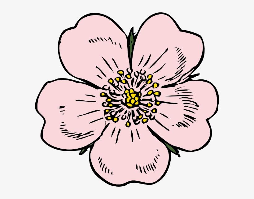 Wild rose clipart border svg black and white library Wild Rose Clip Art - Apple Blossom Flower Drawing ... svg black and white library