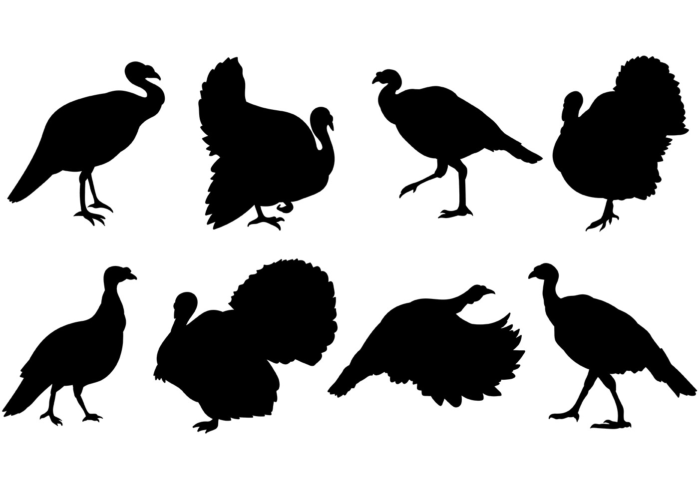 Wild turkey silhouette clipart png black and white library Turkey Free Vector Art - (1,527 Free Downloads) png black and white library