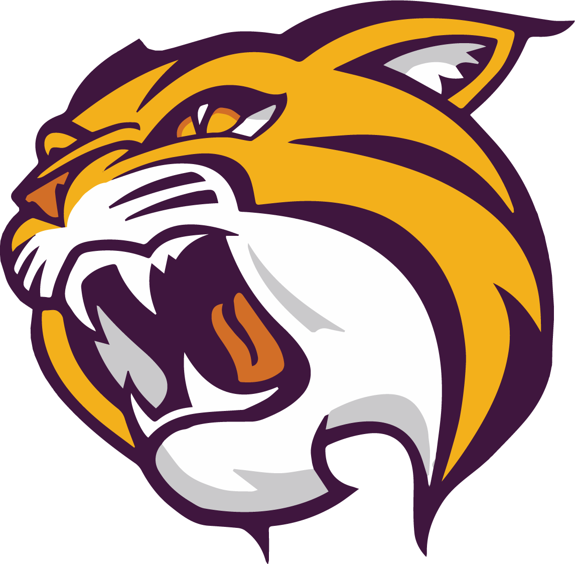 Wildcat school mascot clipart svg library stock Wild Rose School District svg library stock
