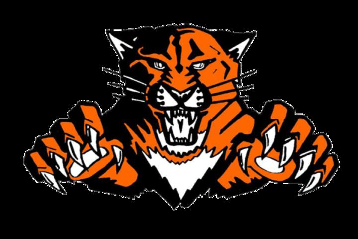Wildcat school mascot clipart vector black and white download The Libertyville Wildcats - ScoreStream vector black and white download