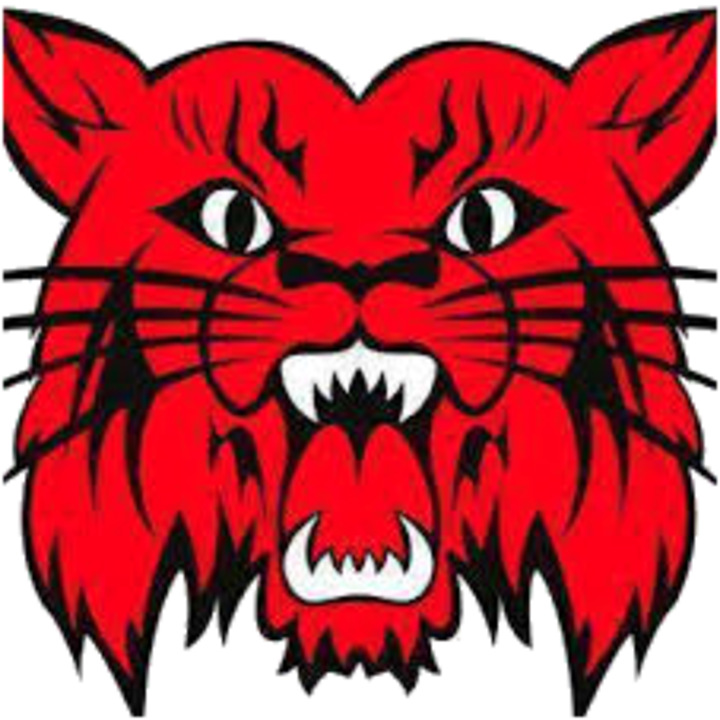 Wildcat school mascot clipart graphic library library The Central City Wildcats - ScoreStream graphic library library
