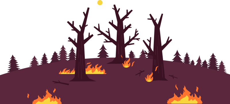Wildfire clipart png clipart freeuse stock Forest and Wildfire Guide - What Causes Them and How to ... clipart freeuse stock