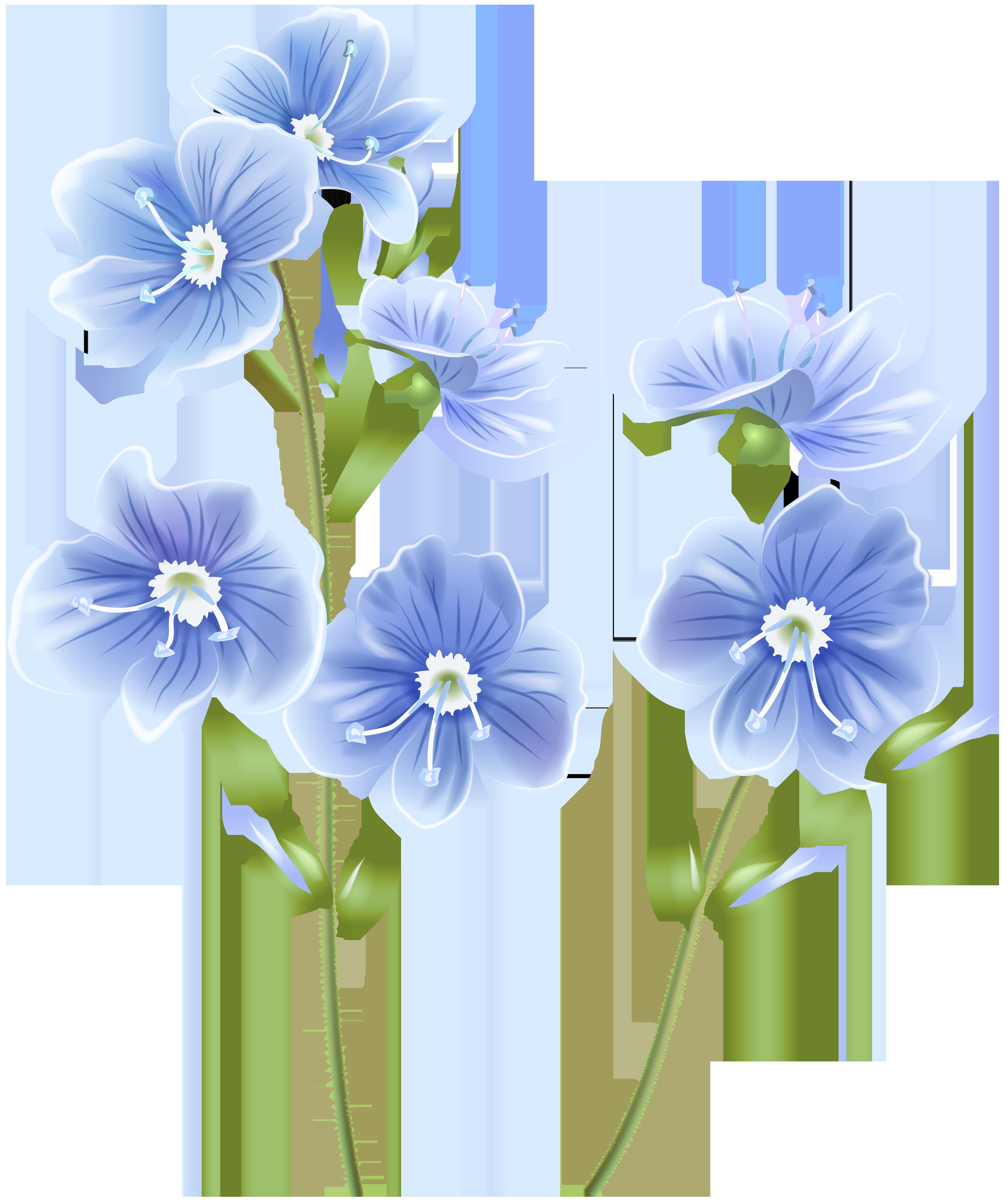 Wildflower clipart images clip art transparent stock Wildflower Blue PNG Clip Art Image   Gallery Yopriceville ... clip art transparent stock