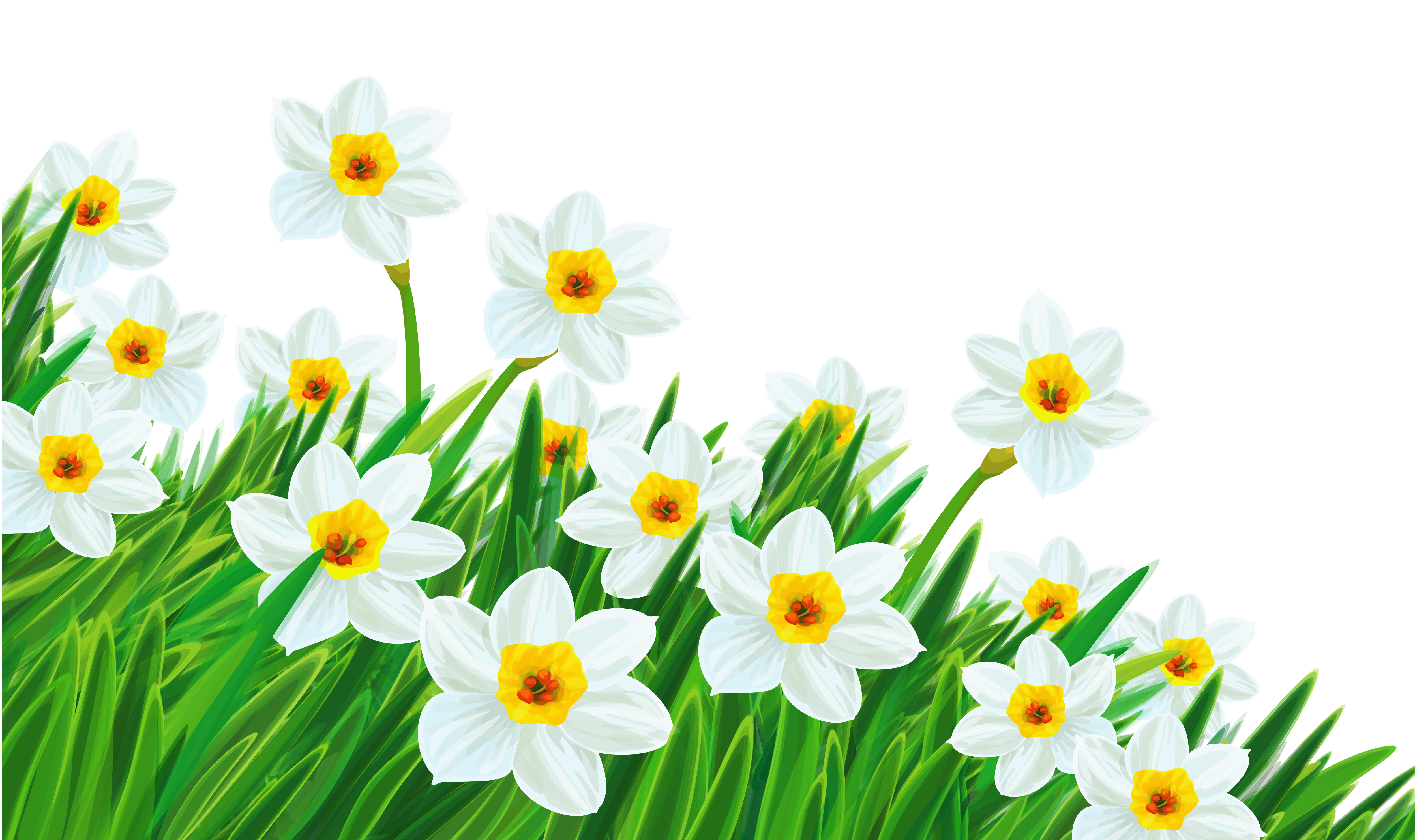 Wildflower background free clipart clip library Flower Free content Clip art - Daffodils Images png download ... clip library