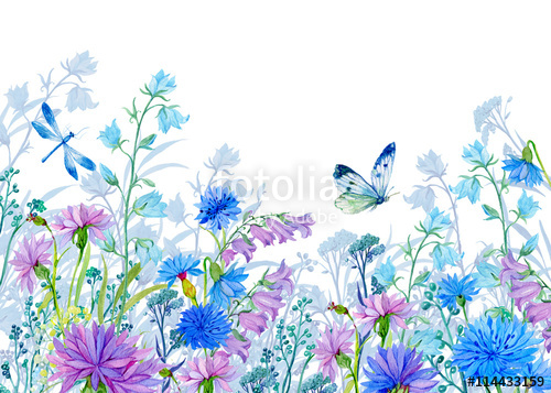 Wildflower background free clipart vector transparent library background of flowers.watercolor illustration.Wildflowers ... vector transparent library
