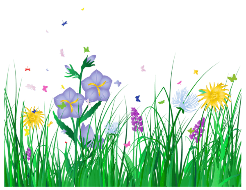 Wildflower background free clipart clipart transparent Nature,Grass,Meadow,Plant,Grass family,Spring,Flower ... clipart transparent