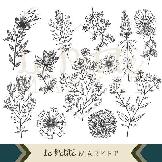 Wildflower clipart images jpg free Wildflower Clip Art Set, Flower Illustration Clipart, Hand ... jpg free