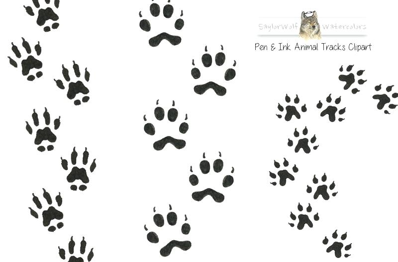 Wildlife tracks clipart jpg black and white Rabbit Paw Prints Footprint Mouse Free On Net Raccoon Paws ... jpg black and white