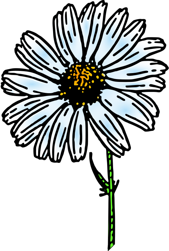 Wilted daisy clipart clip free download Daisies clipart wilted, Daisies wilted Transparent FREE for ... clip free download