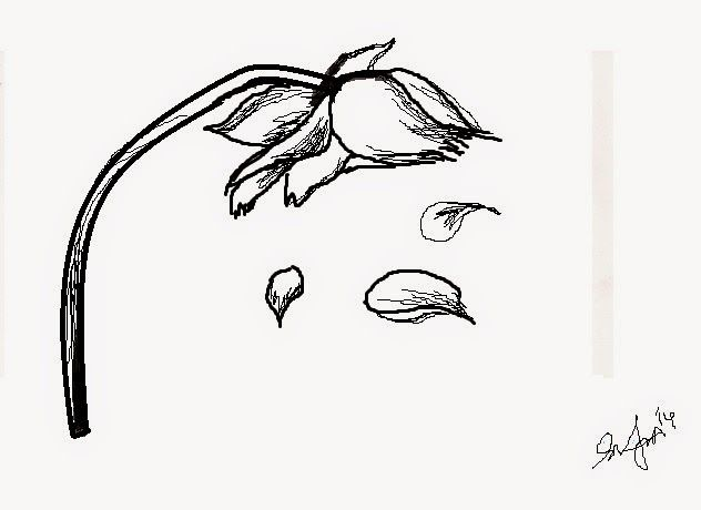 Wilted daisy clipart clipart freeuse Wilted Flower Drawing at PaintingValley.com | Explore ... clipart freeuse