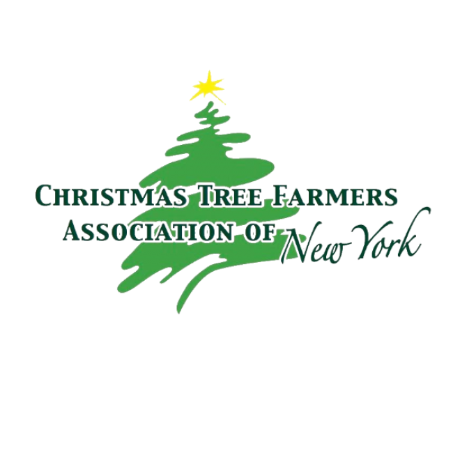 Windy tree clipart clip transparent download Christmas Tree Farms in greater Rochester, NY | Kids Out and About ... clip transparent download