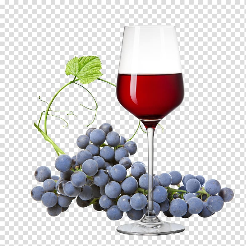 Wine and grapes clipart svg White wine Dolcetto Rosxe9 Grape, Grapes and wines ... svg