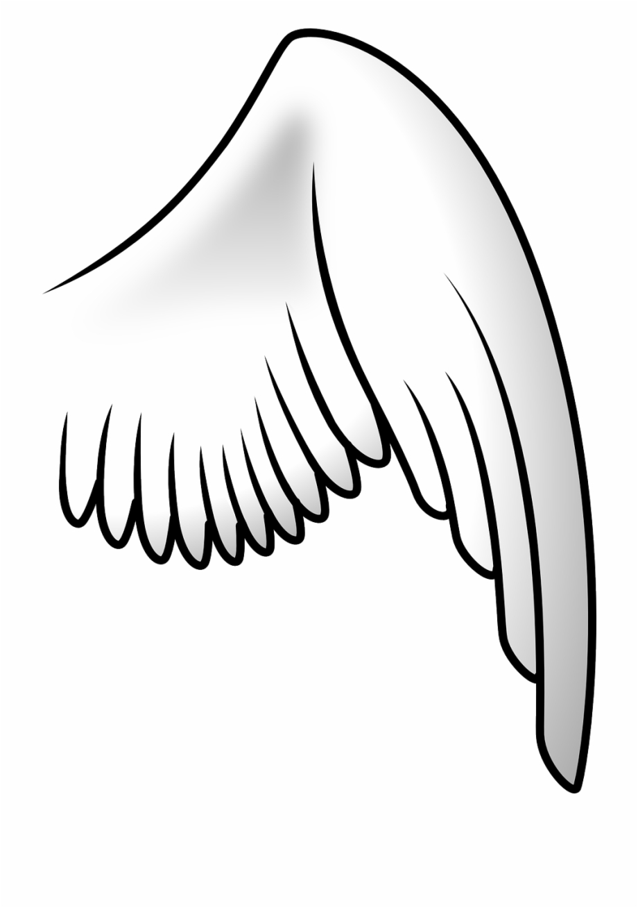 Wing image clipart clip art freeuse download Wing Bird Angel Flying Png Image - Bird Wing Clipart Free ... clip art freeuse download