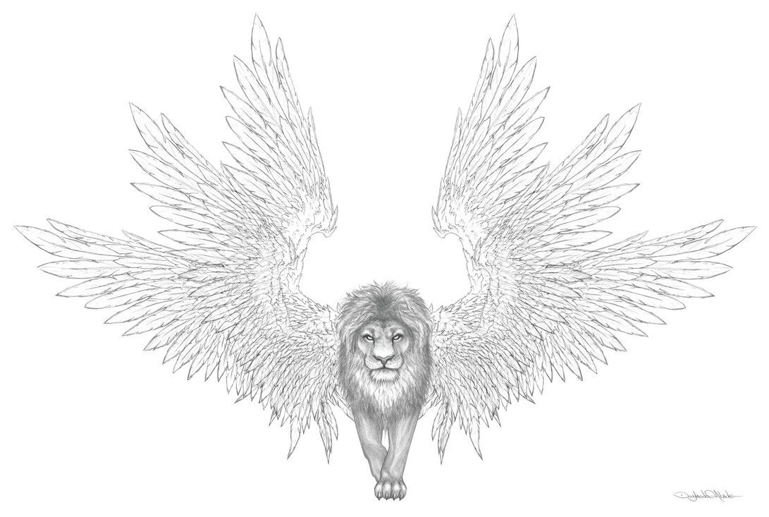Winged lion clipart sit banner library download lion with wings | My drawing dreams <3 | Lion tattoo, Wings ... banner library download