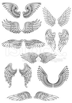 Wings surrounding clipart png transparent stock 87 Best tattoo angel wings images in 2019   Angel wings ... png transparent stock