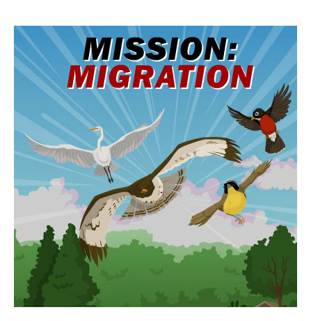 Winter animal migration clipart graphic library stock Free Animal Migration Cliparts, Download Free Clip Art, Free ... graphic library stock