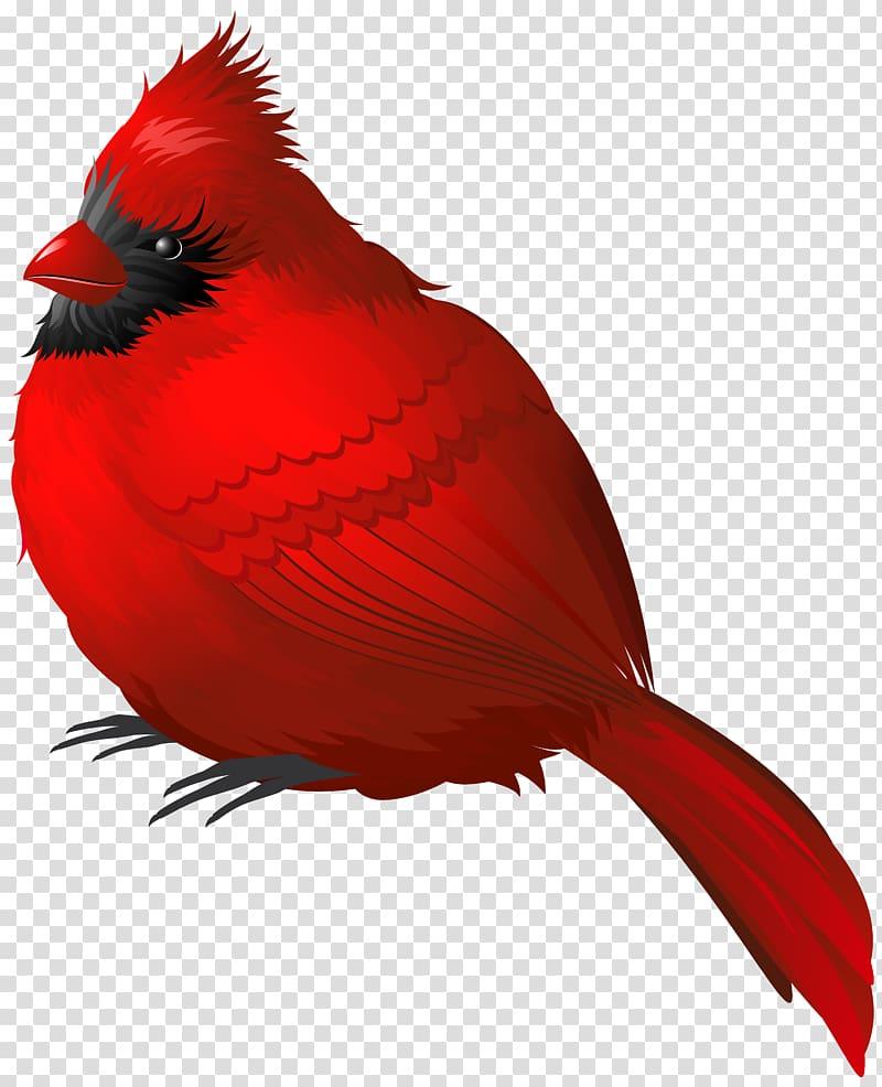 Winter animals clipart transparent background vector free Red bird, Winter Bird , Red Winter Bird transparent ... vector free