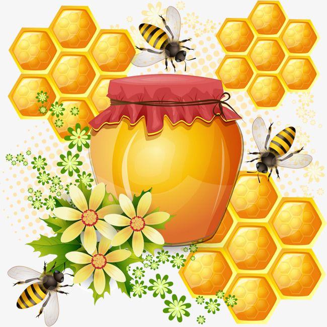 Winter bear clipart honeycomb