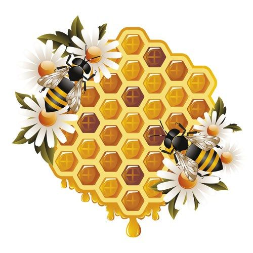 Winter bear clipart honeycomb free download Free honeycomb and bees illustration   3 crazy bees in 2019 ... free download