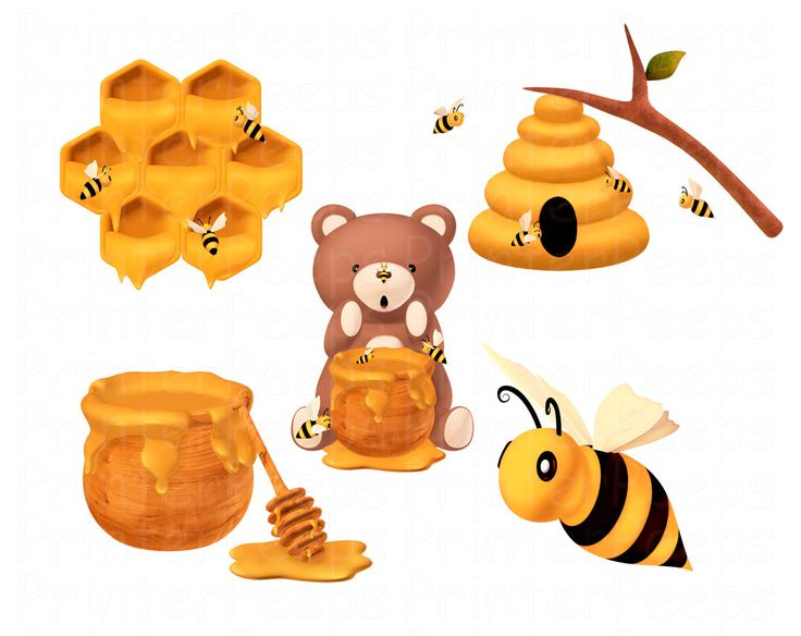 Winter bear clipart honeycomb clipart freeuse stock Beehive honey bee clipart scrapbook pack bear hive by ... clipart freeuse stock