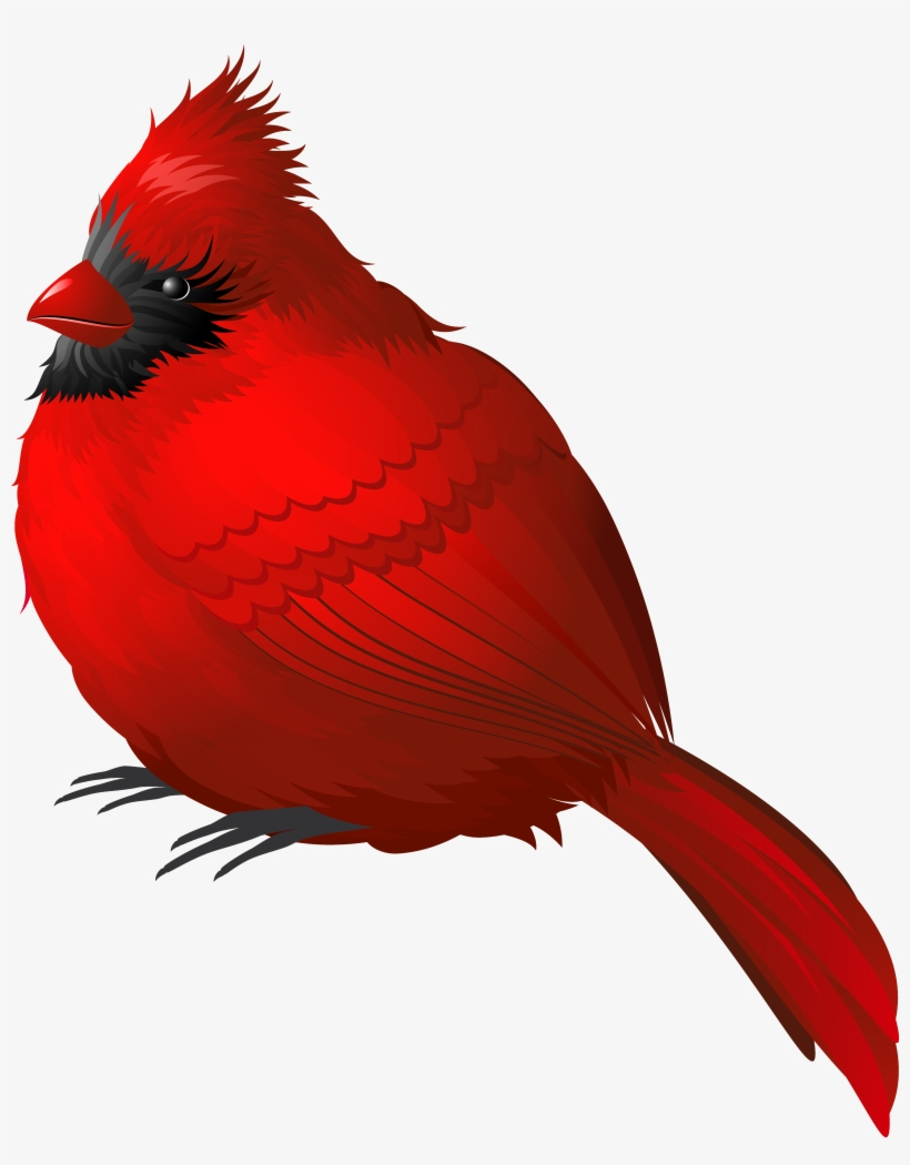Winter clipart cardinal image library Red Winter Bird Png Clipart Image - Cardinal Png - Free ... image library
