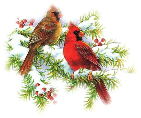 Winter clipart cardinal svg library library Free Cardinal Snow Cliparts, Download Free Clip Art, Free ... svg library library