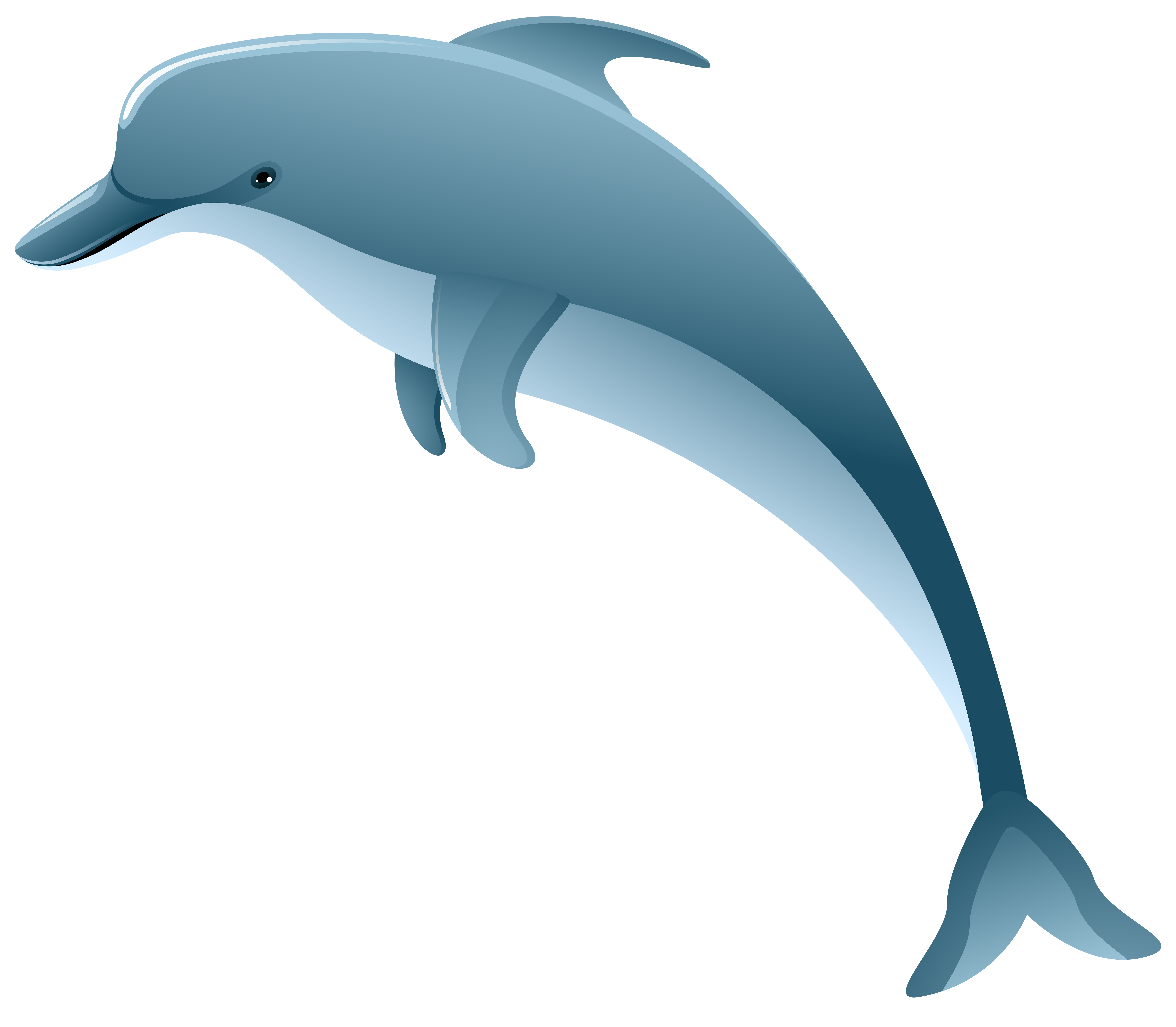 Winter dolphin valentines clipart image library Dolphin PNG Clip Art Image | Gallery Yopriceville - High ... image library