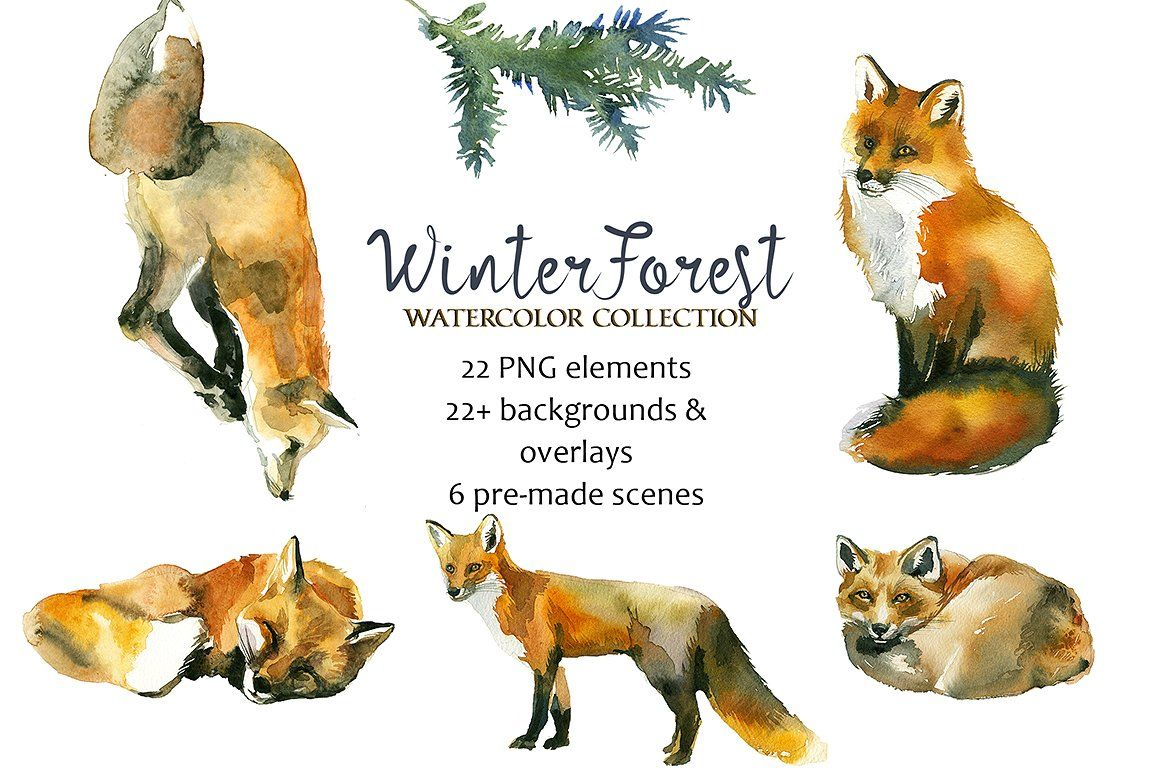 Winter forest animals clipart image free download Winter Forest Watercolor Clipart - Pine Trees, Animals ... image free download