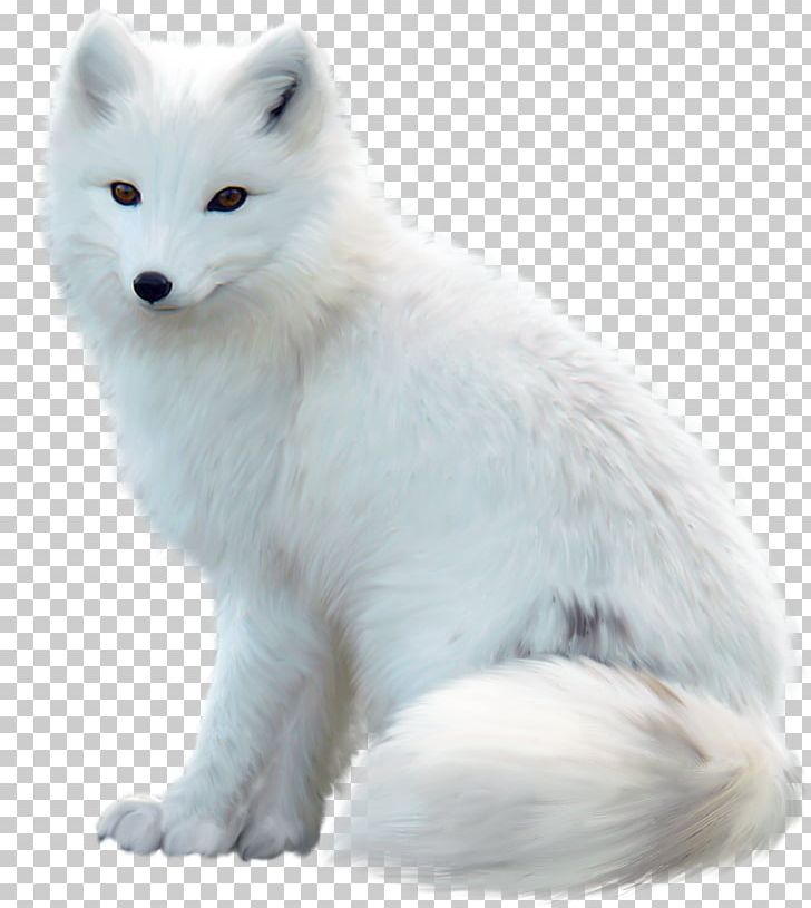 Winter fox in snow clipart svg transparent stock Arctic Fox Maltese Dog Jack Russell Terrier Red Fox PNG ... svg transparent stock