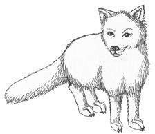 Winter fox in snow clipart image transparent Snowy Fox Cliparts - Cliparts Zone image transparent