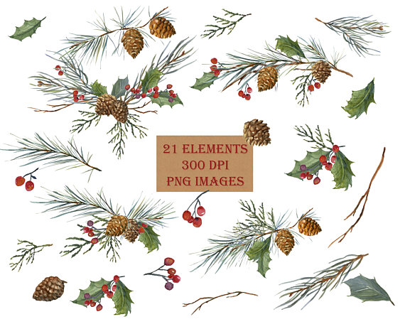 Winter greeny branches clipart banner freeuse stock Winter Greenery Clip Art, Pine Clipart, Christmas Greens ... banner freeuse stock