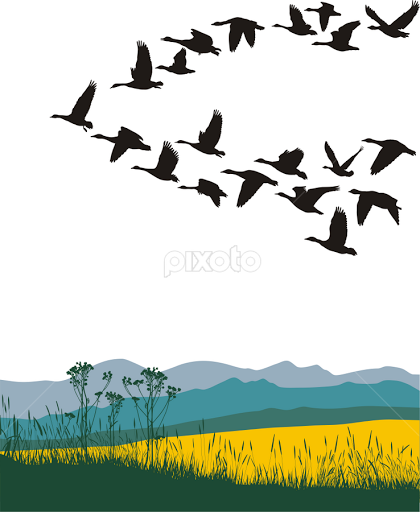 Winter animal migration clipart vector transparent library Free Migrating Animals Cliparts, Download Free Clip Art ... vector transparent library