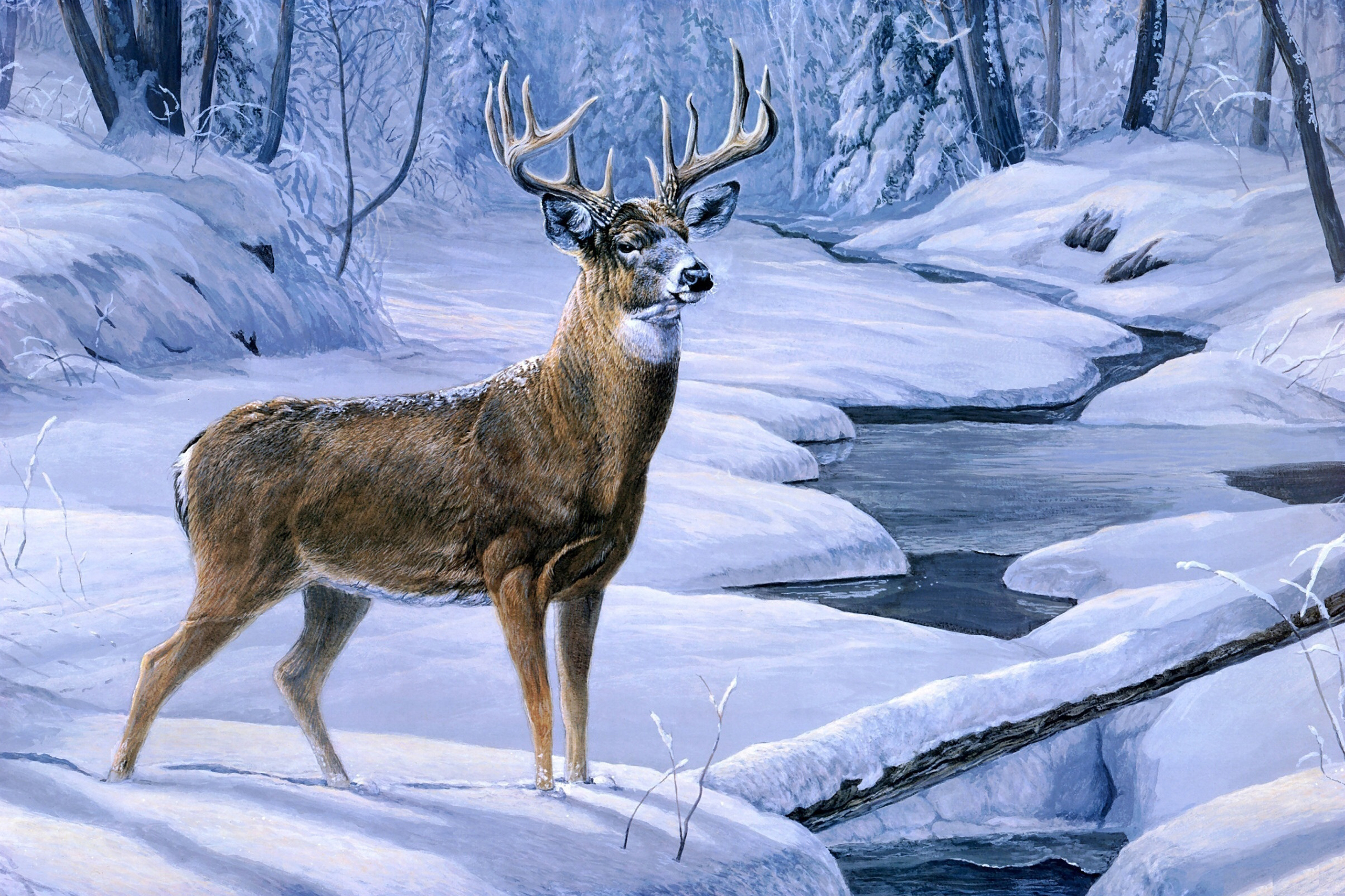 Winter scene with deer clipart picture transparent stock Beautiful Winter Landscape with Deer Background | Gallery ... picture transparent stock