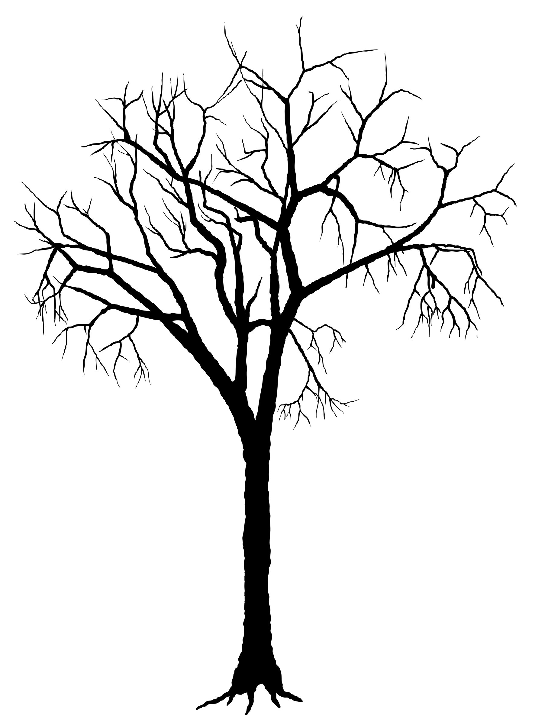 Winter tree canopy clipart picture transparent Silhouette Of Trees - ClipArt Best | wire trees | Oak tree ... picture transparent