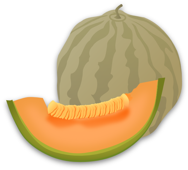 Wintermelon clipart