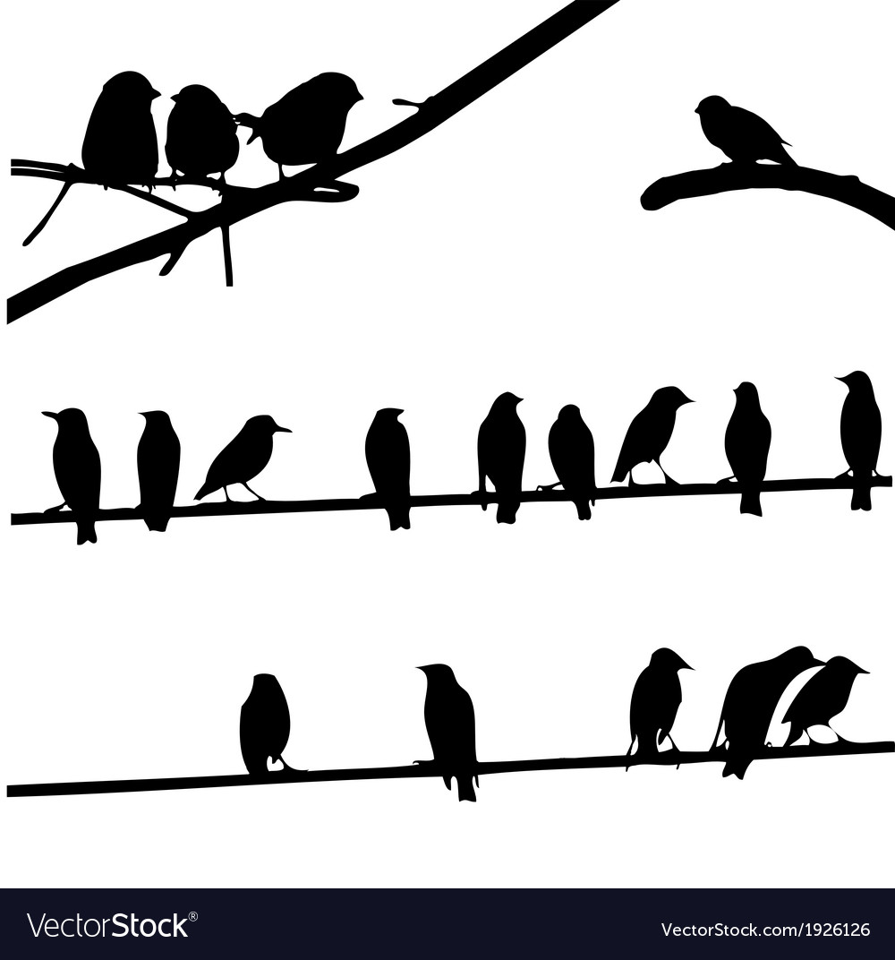 Wire face sillouette clipart freeuse download Birds on Wires silhouette set freeuse download