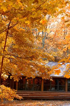 Wisconsin fall outdoors clipart transparent library 49 Best Wisconsin\'s Fall Color images in 2017 | Wisconsin ... transparent library