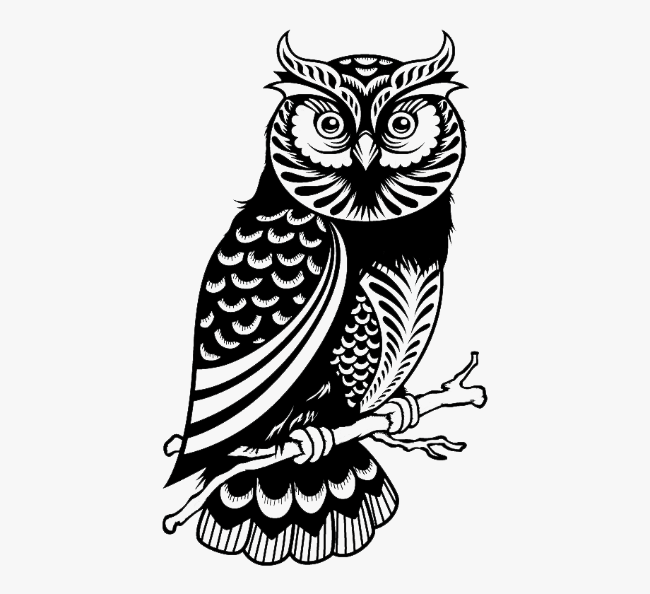 Wise owl clipart black and white vector free library Wise Owl Png Black And White - Owl Decals #77051 - Free ... vector free library