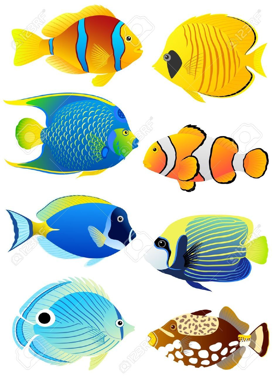 Wish for a fish clipart free stock Stock Vector   VBS 2016 in 2019   Tropical fish pictures ... free stock