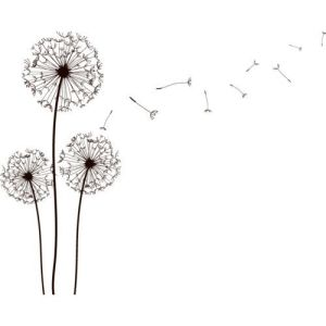Wishing flower clipart graphic black and white library I Wish for You by Camilla Isley book review | kraftireader graphic black and white library