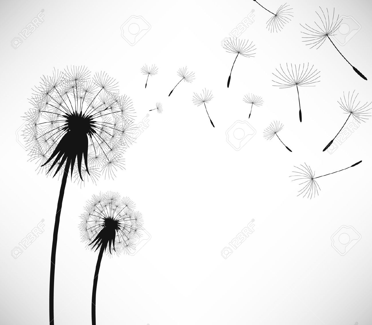 Wishing flower clipart picture royalty free download A Spectacle of Life | Weekly Tides picture royalty free download