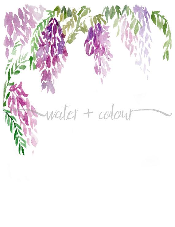 Wisteria lavender hydrangea clipart jpg transparent stock Downloadable wisteria watercolor border   art in 2019 ... jpg transparent stock
