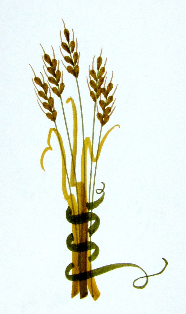 Withered wheat clipart clipart stock Harvest Grains | Marie Browning clipart stock