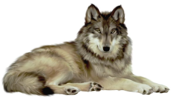 Wolf dog clipart transparent picture black and white Transparent Wolf Clipart | Animal | Wolf clipart, Wolf, Animals picture black and white